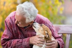 Alter Mann mit Hund im Park